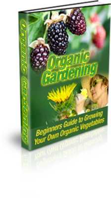 Product picture Organic Vegetable Gardening PLR